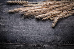 Wheat and rye ears on wooden board top view image Stock Photos