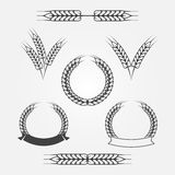 Wheat or rye icons set Royalty Free Stock Photo