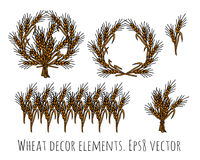 Wheat rye objects isolate decor elements. Stock Photos