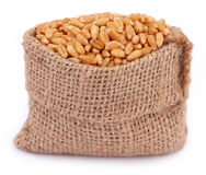 Wheat in a sack bag Royalty Free Stock Image