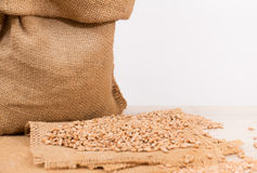 Wheat in a sack Stock Photography