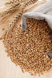 Wheat and the scattered bag with a grain Royalty Free Stock Photos