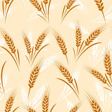Wheat seamless Royalty Free Stock Image