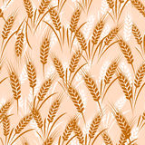 Wheat seamless Royalty Free Stock Photos