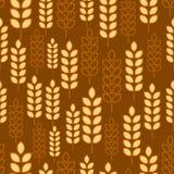 Wheat seamless Royalty Free Stock Photo