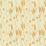 Wheat seamless pattern Stock Photos