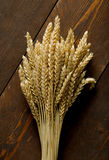 Wheat Seed. In dark wood table Stock Photos