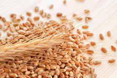 Wheat with seeds Royalty Free Stock Image