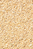 Wheat seeds. Heap of wheat grains close up. Texture for background Royalty Free Stock Photo