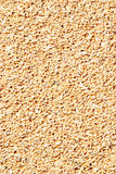 Wheat seeds. Heap of wheat grains close up. Texture for background Stock Photo