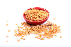 Wheat seeds Royalty Free Stock Image