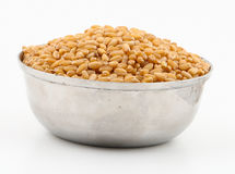 Wheat seeds Stock Photography