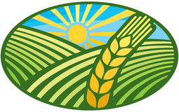 Wheat sign - badge Royalty Free Stock Image