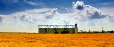 Wheat Silos Royalty Free Stock Photography