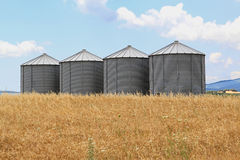 Wheat Silos Royalty Free Stock Images