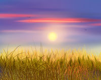 Wheat and sky sunset. Wheat field sunset background. Beautiful Gold Wheat field and blue sky with clouds. Shavuot, Jewish Holiday. Digital illustration, Hand Royalty Free Stock Images