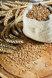 Wheat in small sack Royalty Free Stock Images