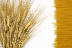 Wheat + spaghetti. A bunch of wheat and a bunch of spaghetti Stock Images