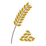 Wheat spike on the white background Stock Photos