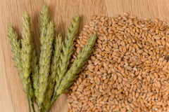 Wheat spikelet Royalty Free Stock Photography
