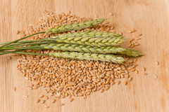 Wheat spikelet Stock Photos