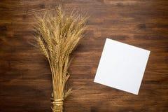 Wheat spikes on dark wooden board Stock Photo