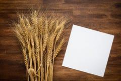 Wheat spikes on dark wooden board Stock Photos