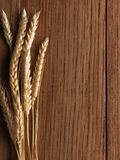 Wheat spikes on wooden board Stock Photography