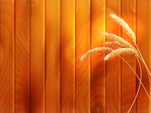 Wheat spikes on wooden board. EPS 10 Royalty Free Stock Photo