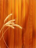 Wheat spikes on wooden board. EPS 10. Vector file included Royalty Free Stock Photography