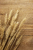 Wheat stalks  Stock Photo