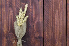 Wheat stems Royalty Free Stock Photography