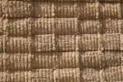 Wheat straw background 3 Stock Image