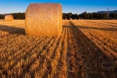 Wheat Straw Bale Stock Photos