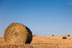 Wheat straw bale Royalty Free Stock Photos