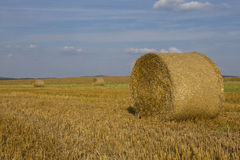 Wheat straw bales in a field. Photo of three wheat straw bales in a field Stock Image