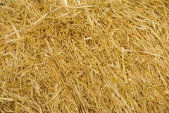 Wheat straws background stock photos