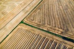 Wheat stubble Stock Images