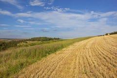 Wheat stubble and scenery Stock Photo