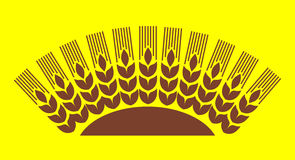 Wheat sun Stock Photography