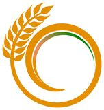 Wheat swirl. Isolated illustrated logo design vector illustration