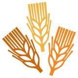 Wheat symbol Royalty Free Stock Photo