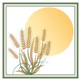 The wheat under a big sun - Logo Royalty Free Stock Photo