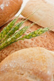 Wheat and various types of bread Stock Images