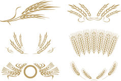 Wheat vector Stock Image