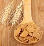 Wheat and Wheat Flakes Royalty Free Stock Image