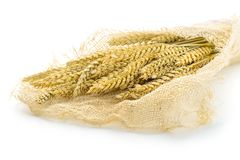The wheat Stock Photography