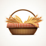 Wheat in wicker basket Royalty Free Stock Images