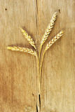 Wheat on wood Royalty Free Stock Photos