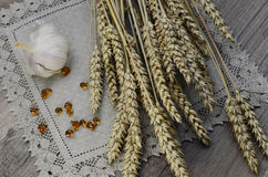 Wheat on the wood background. Wheat, garlic and wood resin on linen napkin Royalty Free Stock Photography